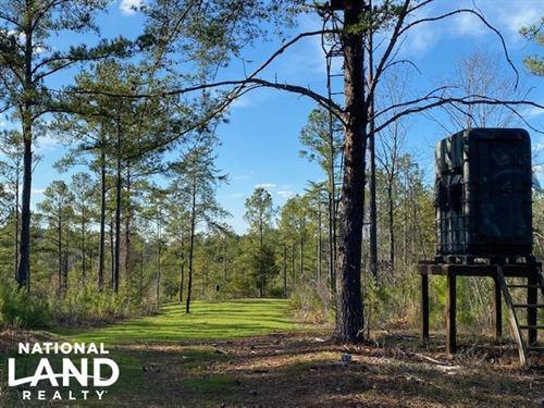 Sawtooth Branch Hunting & Timber Tr : Jemison : Chilton County : Alabama