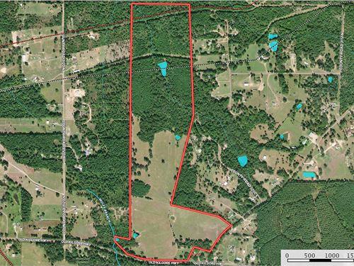 East Texas Land Timber Pasture : Kilgore : Smith County : Texas