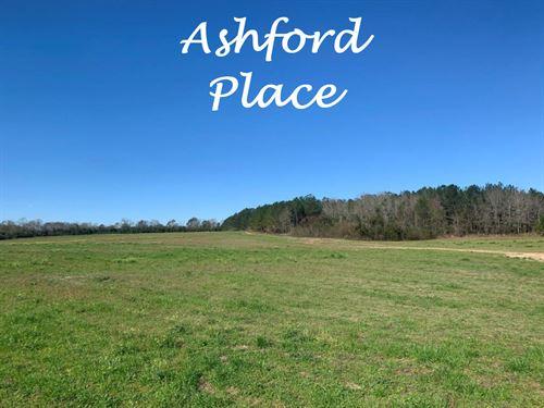 Farmland and Woods Near Dothan : Ashford : Houston County : Alabama
