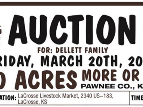 Pawnee Idle Cultivation : Rush Center : Pawnee County : Kansas