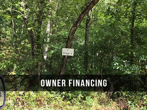 $500 Down Land on National Forest : Birch Tree : Shannon County : Missouri