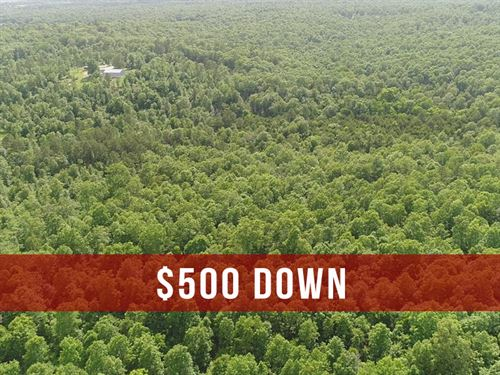 $500 Down on 10 Acres : Birch Tree : Shannon County : Missouri