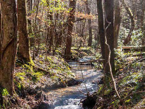 114 Acres of Prime Hardwoods Hunti : Alexander City : Tallapoosa County : Alabama