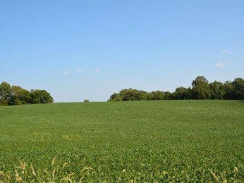 Dream Land : Farmville : Cumberland County : Virginia