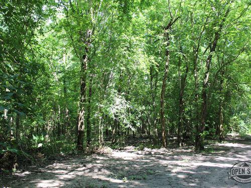 .56 Acres in Bullard, TX : Bullard : Cherokee County : Texas