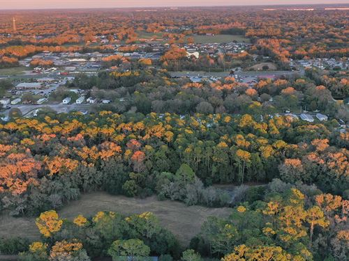 North Lakeland 10 Acre Home Site : Lakeland : Polk County : Florida