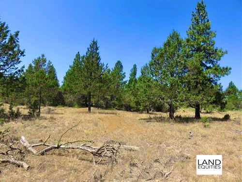 Secluded Lot Near National Forest : Bonanza : Klamath County : Oregon