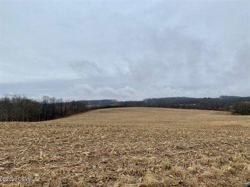 134 Acres of Prime Land : Orangeville : Columbia County : Pennsylvania