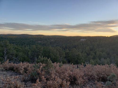 Enjoy The Off Grid Quiet Life : Timberon : Otero County : New Mexico