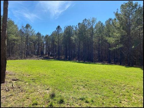 70 Acres In Leake County In Walnut : Walnut Grove : Leake County : Mississippi