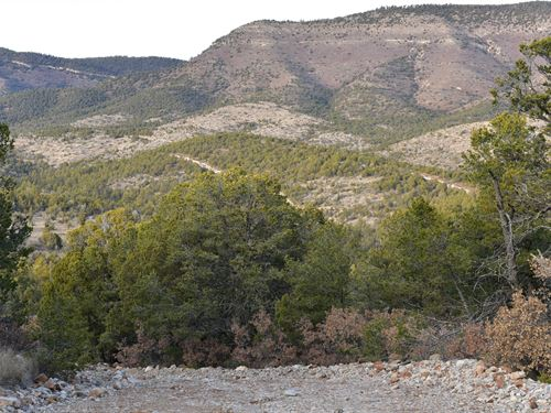 Make A Home Away From Home : Timberon : Otero County : New Mexico