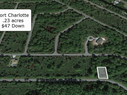 .23 Acre Lot on Paved Road : Port Charlotte : Charlotte County : Florida