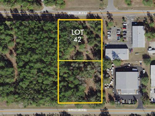 Citrus Industrial Lot 42 : Hernando : Citrus County : Florida