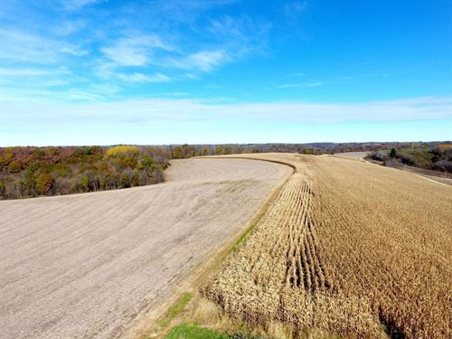 85 ac West Ridge Rd : Blue River : Richland County : Wisconsin
