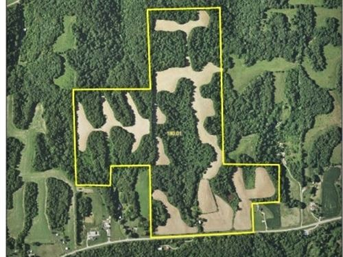 Intensely Managed Farm : Kampsville : Calhoun County : Illinois