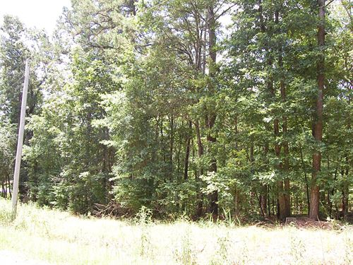 Lush Residential Double Lot : Hot Springs : Garland County : Arkansas