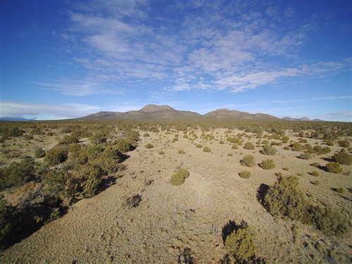 125 Cow Mill Rd : Edgewood : Santa Fe County : New Mexico