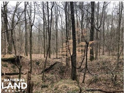 97 Acres Anderson Road : Edwards : Hinds County : Mississippi