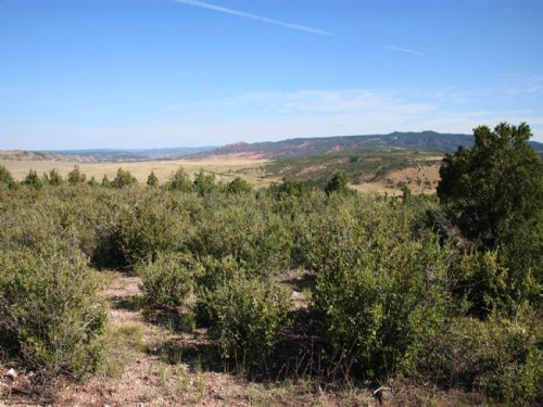 Lookout Mountain Acreage Tract 23 : Newcastle : Weston County : Wyoming