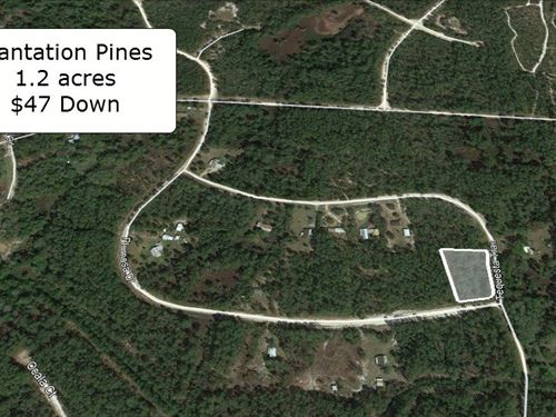 Oversized 1.20 Acre Corner Lot : Georgetown : Putnam County : Florida