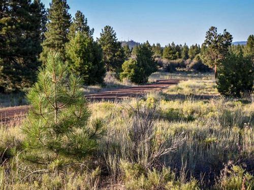 Build Your Dream Home, $199/Month : Chiloquin : Klamath County : Oregon