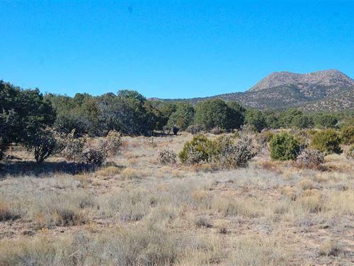 175 Cow Mill Road : Edgewood : Santa Fe County : New Mexico