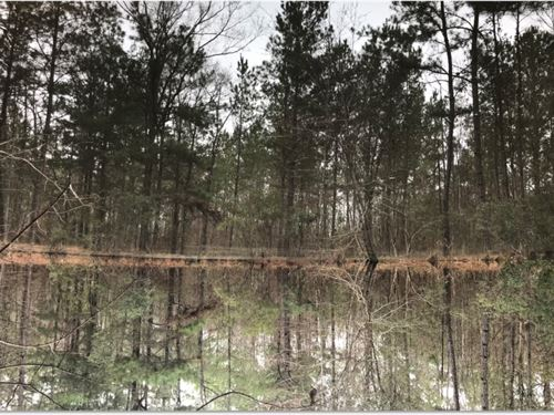29.63 Acres In Marion County In Che : Columbia : Marion County : Mississippi