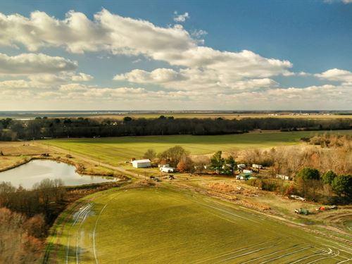 The Lawson-Trotter Farm : Roe : Monroe County : Arkansas