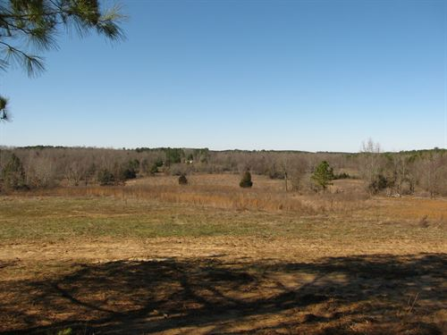 Land Tennessee, Farm, Pond, Barn : Adamsville : McNairy County : Tennessee