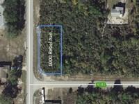 .26 Acre Placid Lakes Lot Near Lake : Lake Placid : Highlands County : Florida