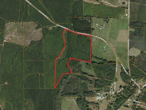 Versatile Tract Near Lake Gaston : Roanoke Rapids : Halifax County : North Carolina