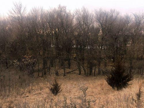 Fillmore County Hunters Hideaway : Geneva : Fillmore County : Nebraska
