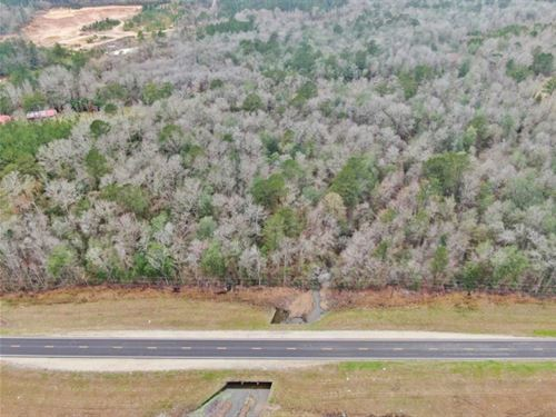 16.5 Acres Land For Sale Near Richt : Richton : Perry County : Mississippi