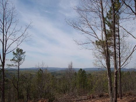 286 Acres On Candler Mountain : Goodwater : Coosa County : Alabama