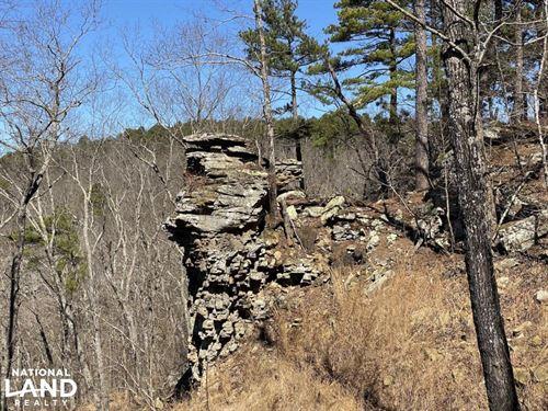 40 Acres Timberland & Ozark Moun : Botkinburg : Van Buren County : Arkansas