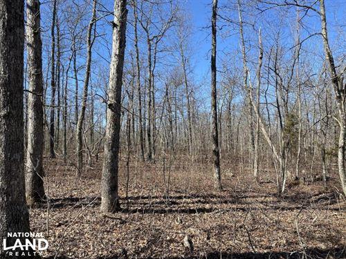 32 Acres Timberland : Rupert : Van Buren County : Arkansas