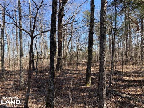 67 Acres Timberland : Rupert : Van Buren County : Arkansas