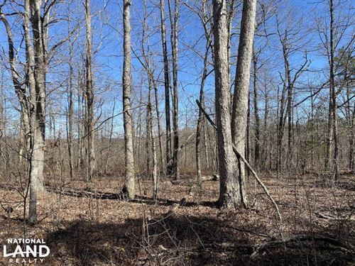 17 Acres Timberland : Rupert : Van Buren County : Arkansas