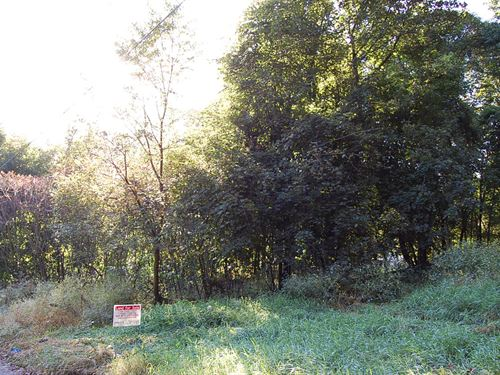 Roomy Residential in Neighborhood : Jamestown : Chautauqua County : New York