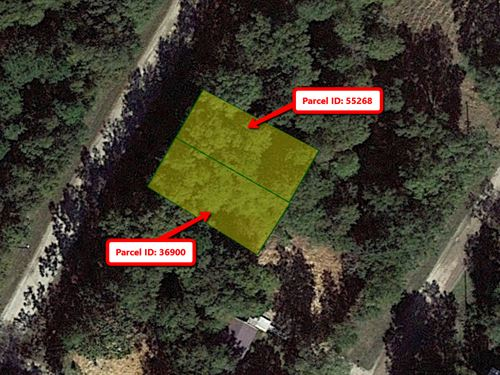 Double Lot 0.18 Acres : Livingston : Polk County : Texas