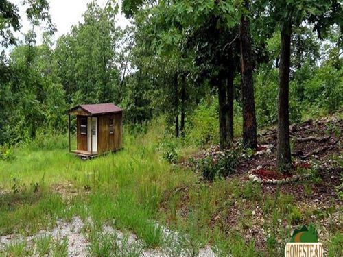Off-Grid Retreat in The Ozarks : Elk Creek : Texas County : Missouri