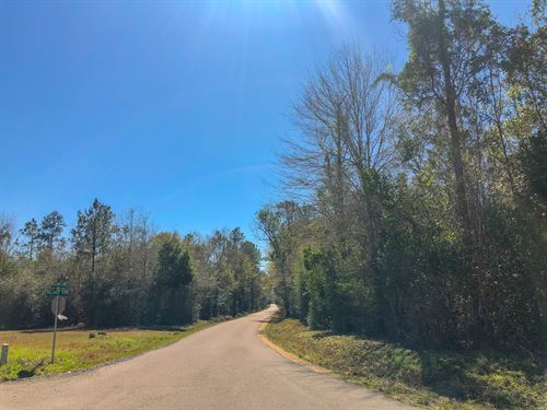 18 Acres Village Creek : Silsbee : Hardin County : Texas