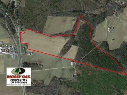 52 Acres of Undeveloped Farm : Suffolk : Suffolk City County : Virginia