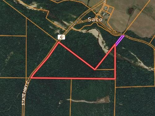 35.67 Acres Woods Twelve Mile Creek : Fredericktown : Madison County : Missouri