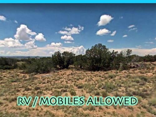 Get Off The Grid and Live on : Snowflake : Navajo County : Arizona