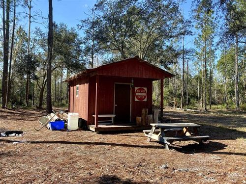 40.01 Acre Hike Lake Cabin : Madison : Florida