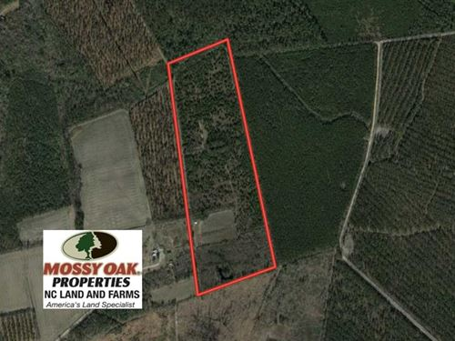 45.13 Acres of Timber And Hunting : Cerro Gordo : Columbus County : North Carolina