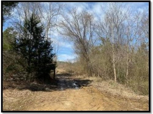 282 Acres In Holmes County In Lexin : Lexington : Holmes County : Mississippi