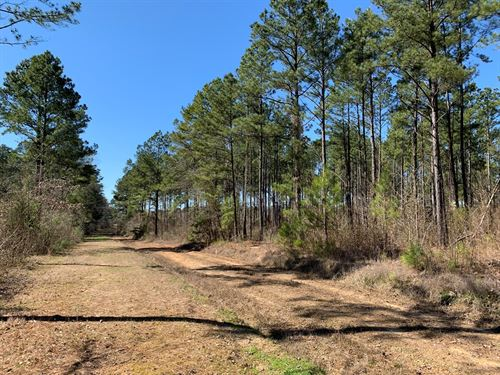 Pine Timber Land, Utilities County : Magnolia : Columbia County : Arkansas