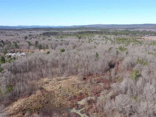 32 Acres of Home Site & Hunting : Roland : Pulaski County : Arkansas